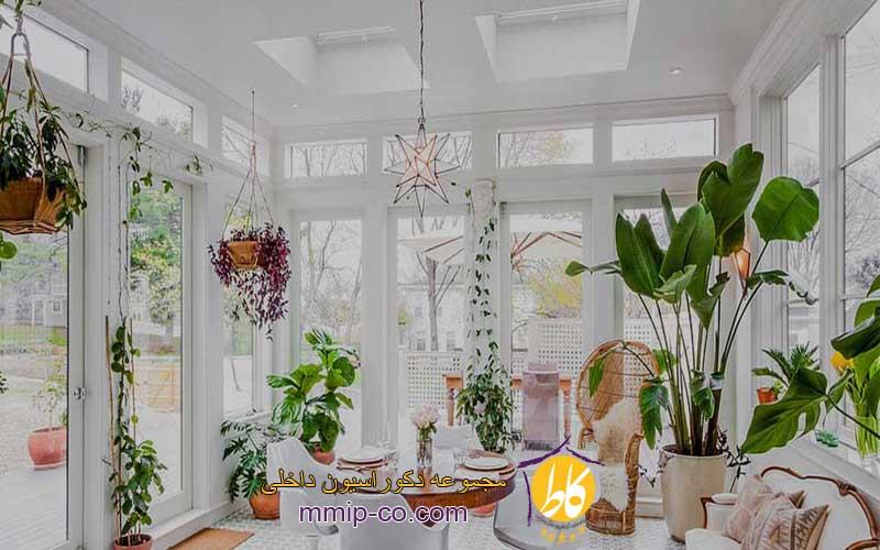 3 دلیل استفاده از گیاهان در طراحی داخلی