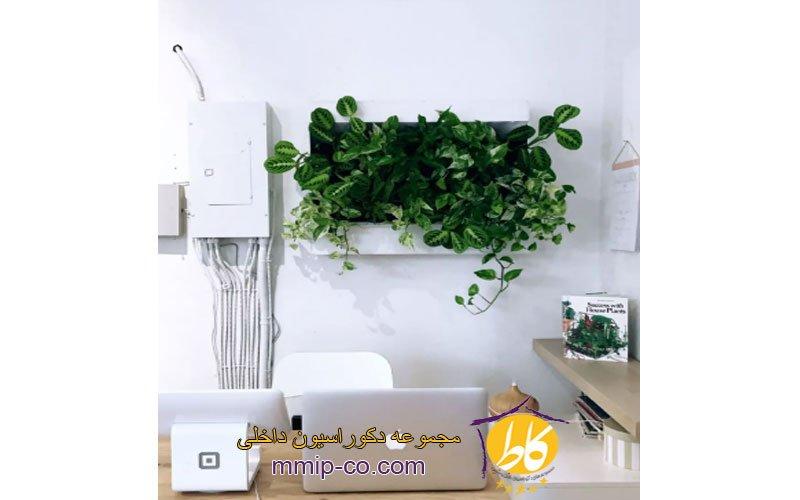 7 ایده برای استفاده از دیوار زنده